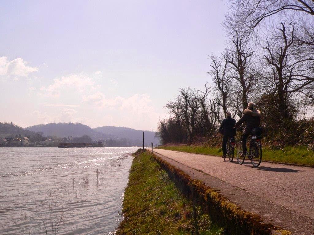 Camping Rhein Remagen Goldene Meile Frühling Ostern Fahrradfahrer