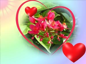 Déclaration d'amour pour lui courte 4