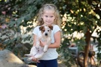We Are Selling Queensland Heeler Puppies