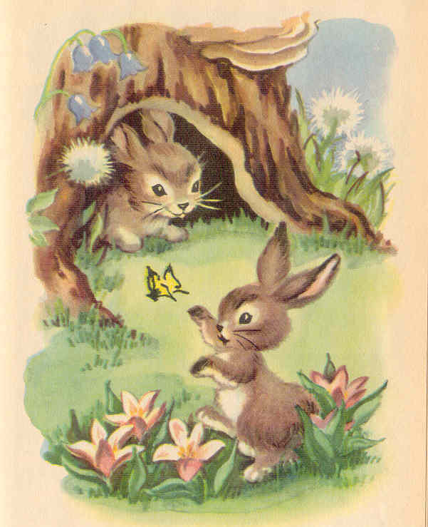 Gold Country Girls Bunnies From Books