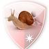 Enjoy Free Browsing With your MTN Sim Via SlowDNS