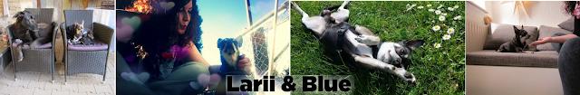 Larii & Blue