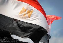 مدونة زميل الكفاح على تويتر،هانى أحمد