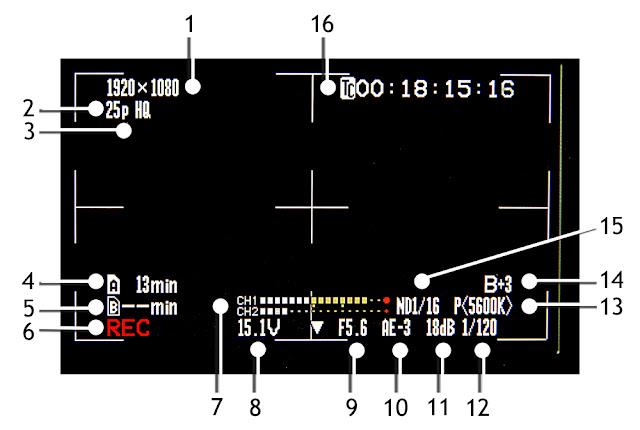 Description des informations affichées sur un écran de caméra vidéo