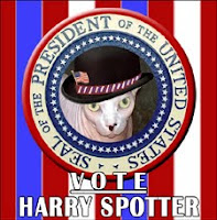 Harry Spotter for President!