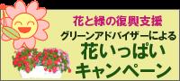 グリーンアドバイザーによる花いっぱいキャンペーン ホームページ