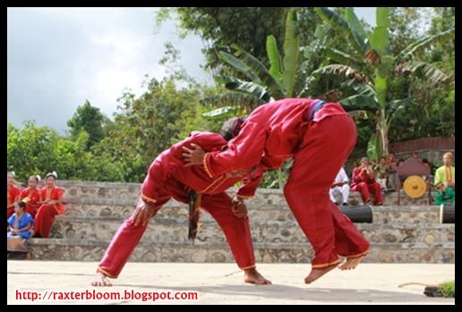 Tradisi Adu Kepala di Nusa Tengara Barat yang Unik raxterbloom.blogspot.com