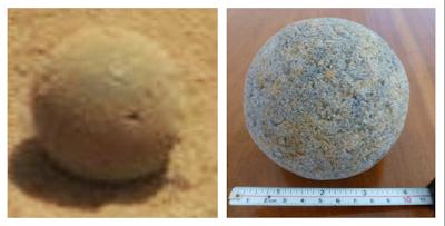 Sea Sponge Found On Mars By NASA's Mars Rover, UFO Sightings