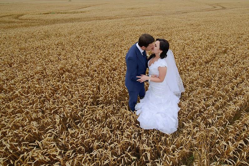 vestuvių fotosesija rugių laukuose