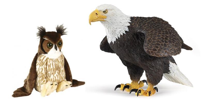 Una escuela en El Parque: El águila de Daniel y el búho de Nano