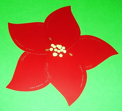 Flower Picture on Learning Ideas   Grades K 8  Making A Poinsettia Craft Activity