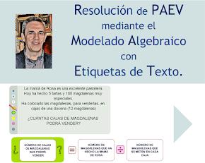 PAEV_etiquetas