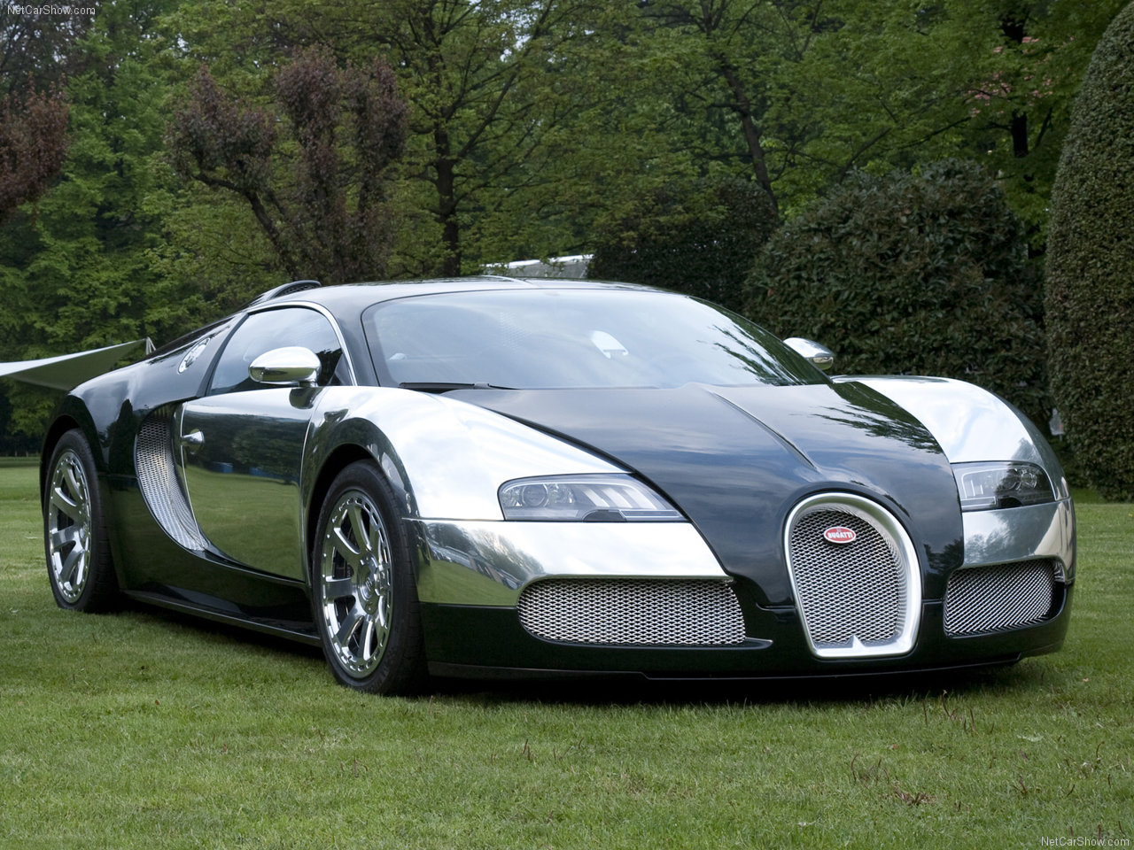 the top 10 39 s fastest cars in the world top 10 list 2010. Black Bedroom Furniture Sets. Home Design Ideas