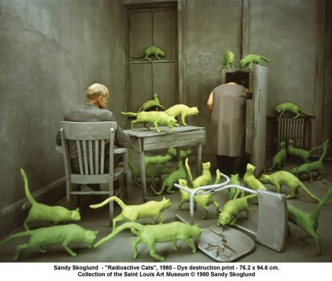 the cat ladies  radioactive cats