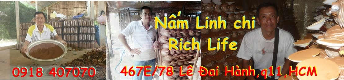 NẤM LINH CHI - RICH LIFE