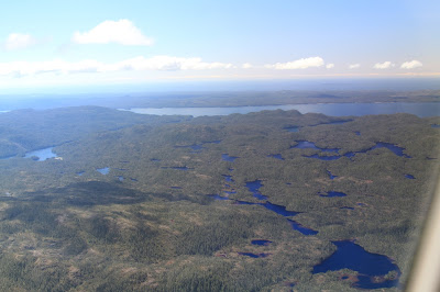 View of Princess Royal Island Looking West from the Helijet