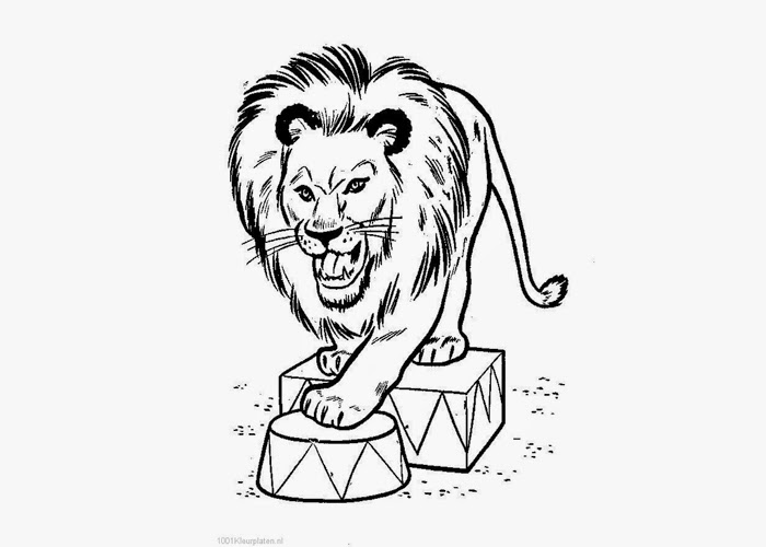 free circus lion coloring pages - photo#11