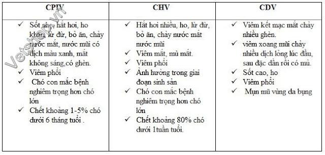 Bảng 1: So sánh các triệu chứng do PCIV và các bệnh khác
