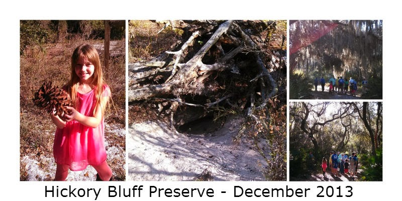 Check out our discoveries on a hike in Osteen, Florida. We found some neat stuff! #naturestudy #hiking #homeschool @tmichellecannon