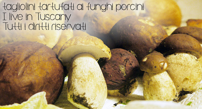 funghi-porcini-tartufi-tagliolini