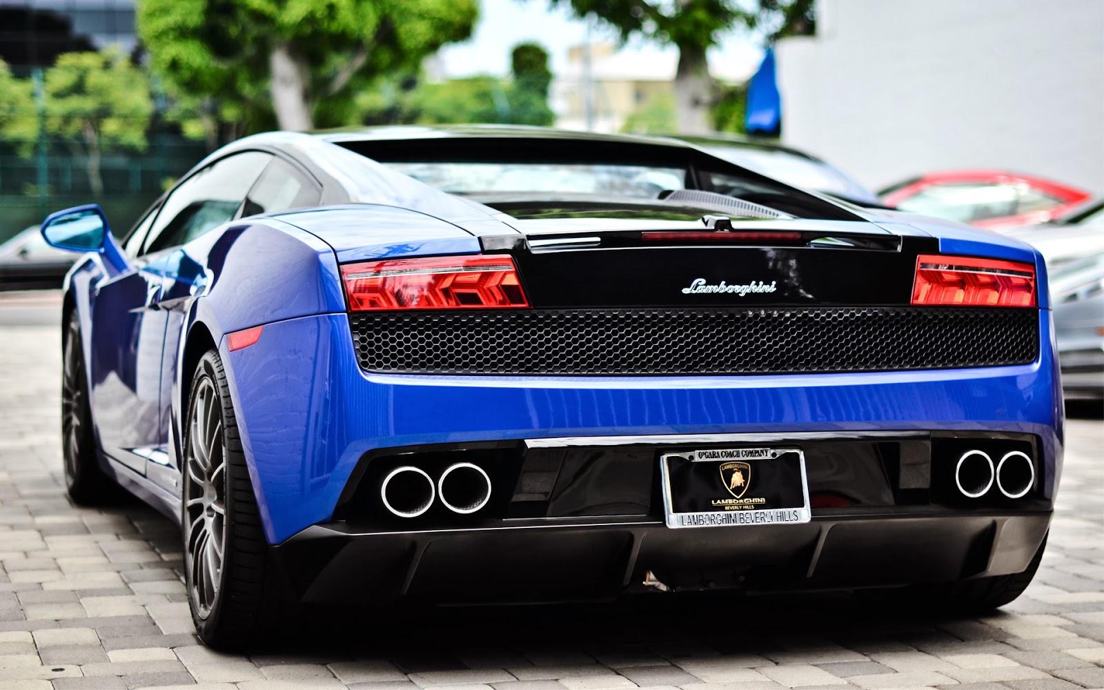 blue lamborghini blue flower - Lamborghini Black And Blue