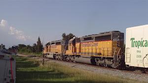 FEC202 Sep 6, 2012