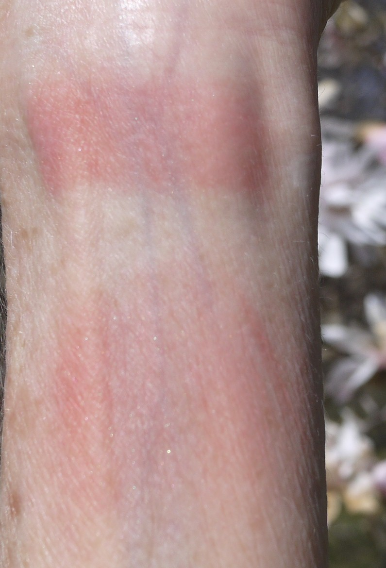 i applied tea rose two ways for my swatch photos using a sponge tipped applicator i applied it heavily in a stripe at the top of my arm for my photos - Shiseido Luminizing Satin Face Color