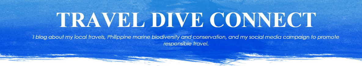 Travel Dive Connect pinoy blog