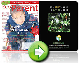 Winter 2012 EcoParent Magazine Cover, peapodLife Building EcoSystems and Technology, image