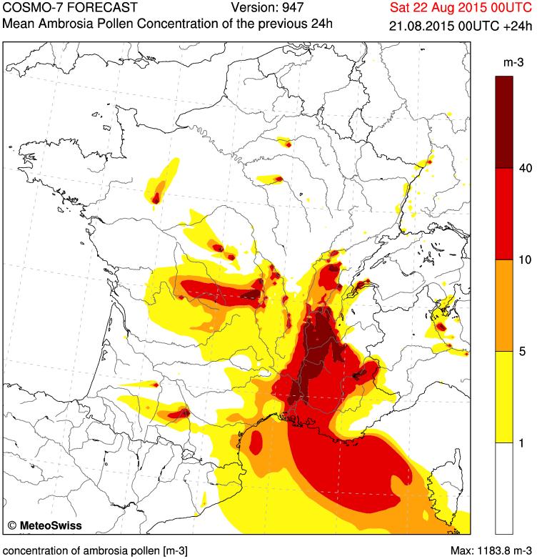 Nature alerte: 22/08/2015...France: Allergie: l'ambroisie fait pleurer la région Rhône-Alpes