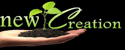 New Creation NGO