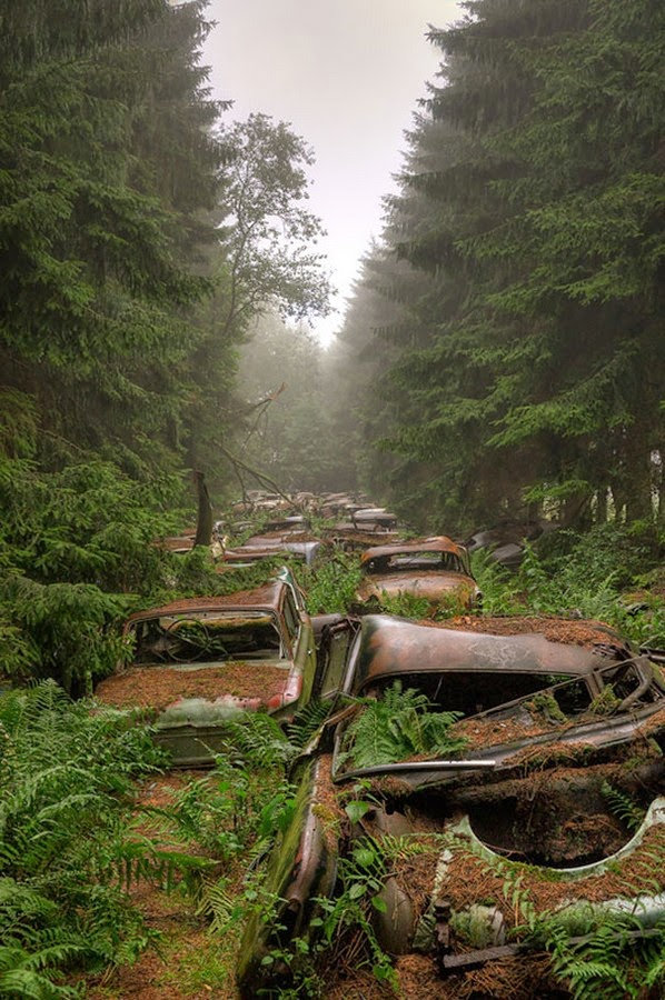 Car-Graveyard-3