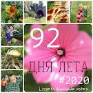 92 дня лета #2020