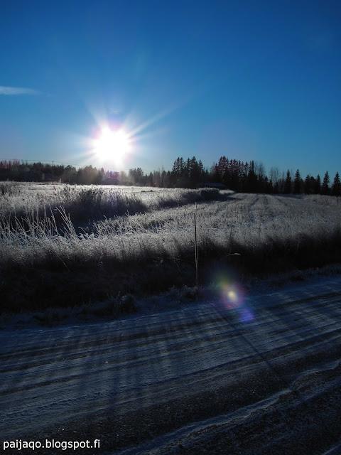 talviaurinko