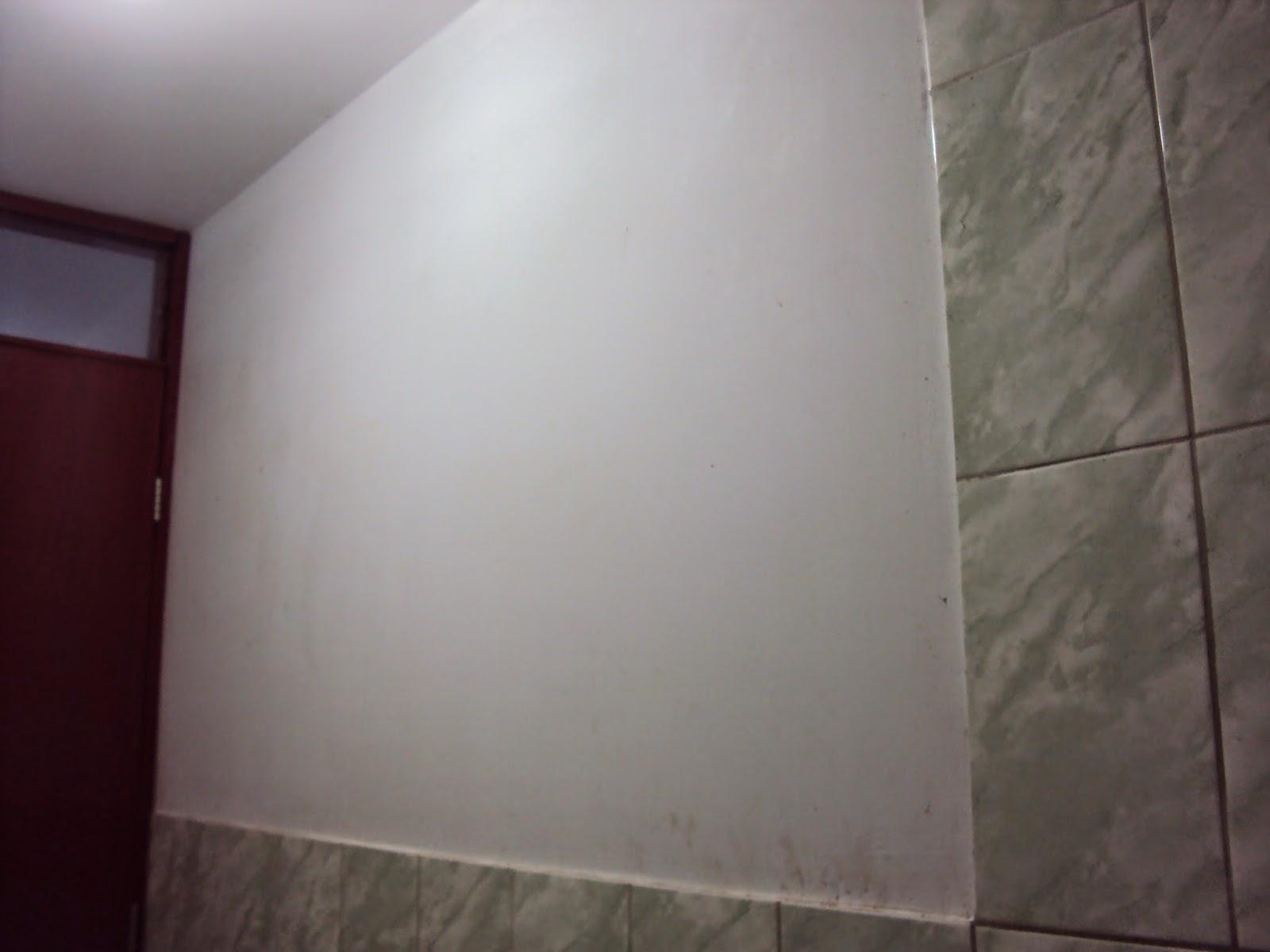 Pintandoelperu aplicaci n del estuco veneciano color for Color blanco perla para paredes