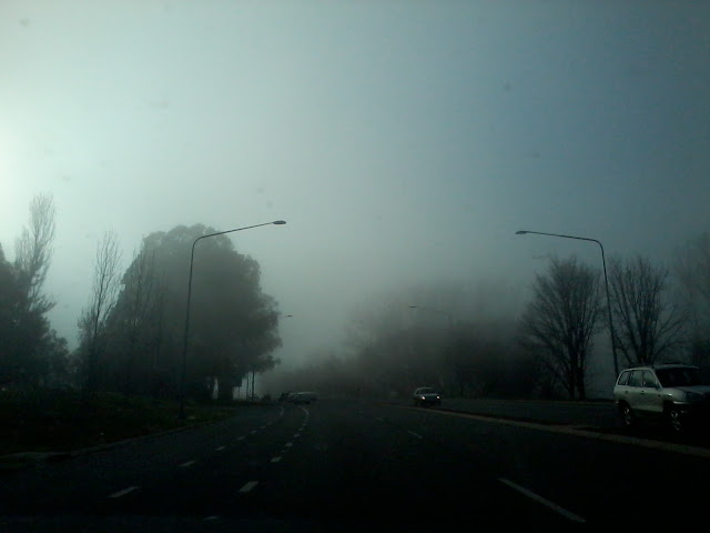 Misty Morning Drive to Work