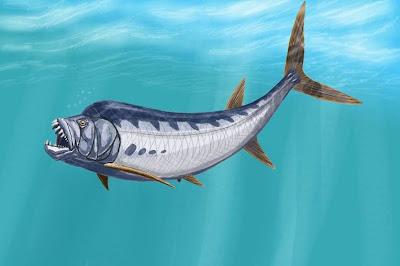peces del cretaceo Xiphactinus  border=