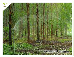 農作樹造紙