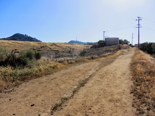 View southwest from Toyon Trail toward Toyon landfill restoration project, Griffith Park