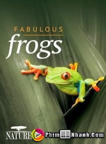 Thế Giới Loài Ếch - Fabulous Frogs