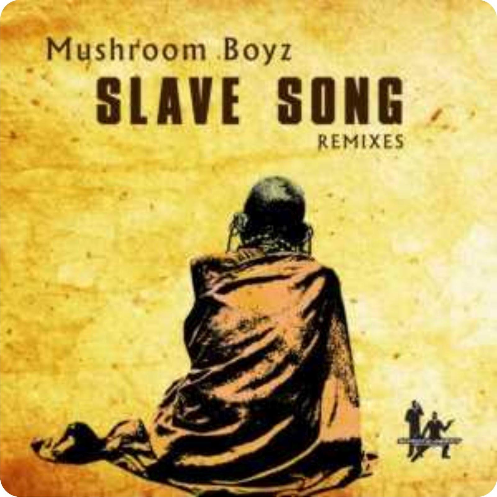 Mushroom boyz slave song darque 39 s tribute mix for 45 house music