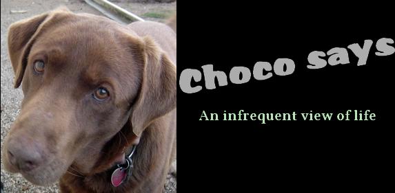 Choco says