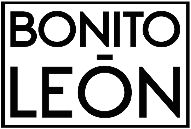 Bonito León Guanajuato