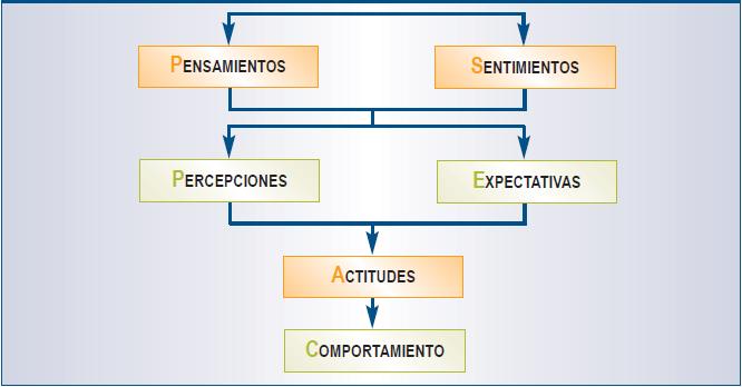 Actitud-Comportamiento Organizacional