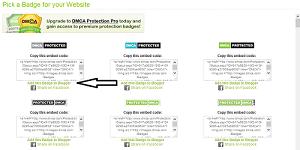 Cara Mendaftarkan Blog di DMCA Protection