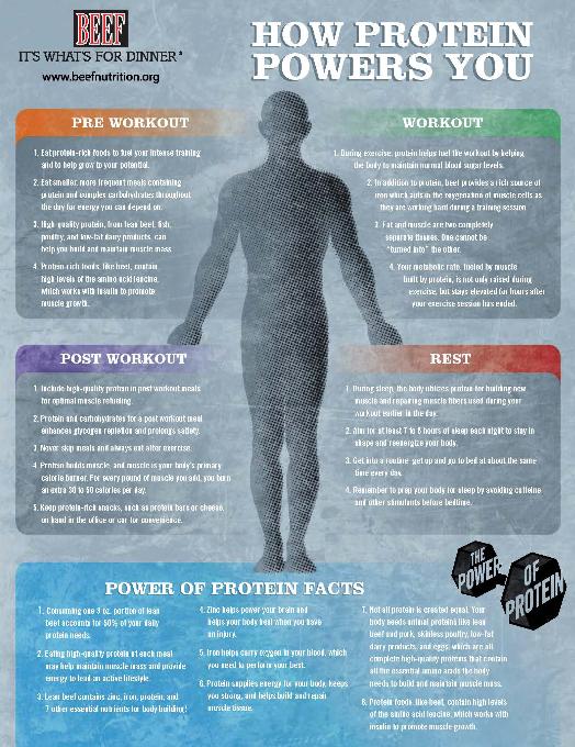 http://www.idbeef.org/CMDocs/IdahoBC/powerofprotein.pdf