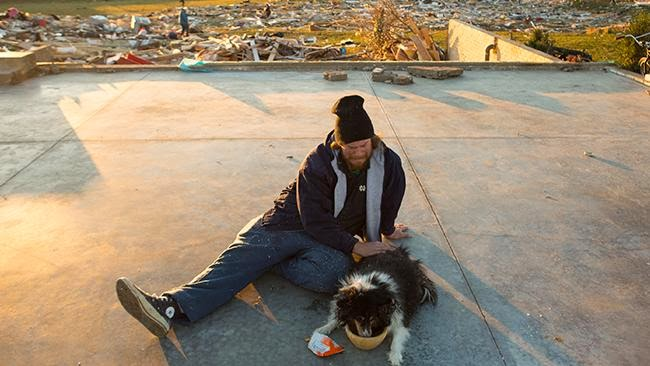 Missing dog found alive in rubble of Illinois tornado (9 pics), dog survive tornado, illinois tornado heartwarming story