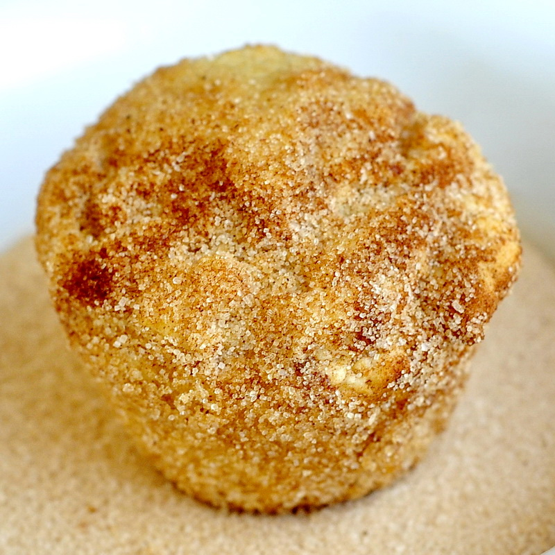 Cinnamon Sugar Donut Muffins - Rock Recipes -The Best Food & Photos ...