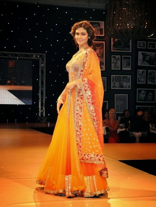 Esha Gupta Dresses Designed by Manish Malhotra