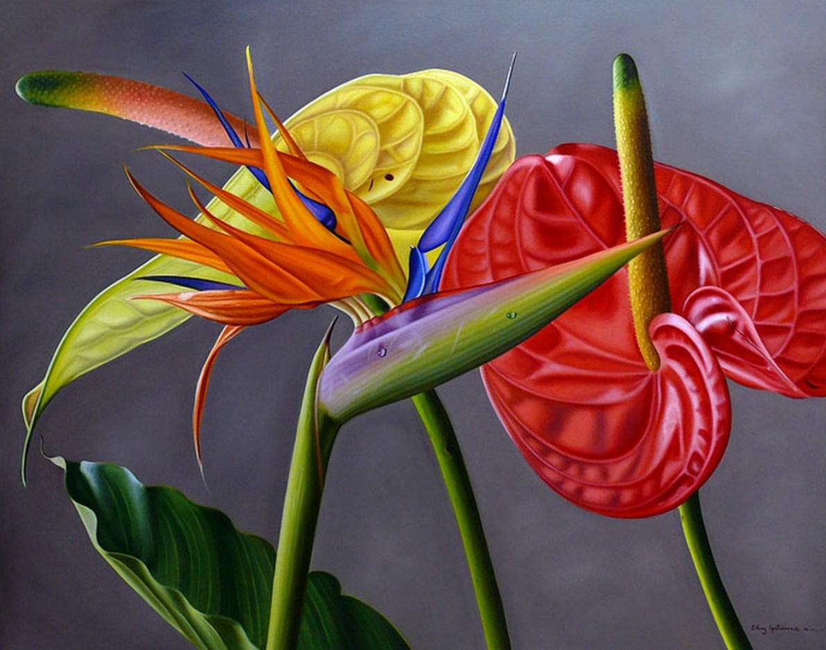 Cuadros modernos pinturas y dibujos cuadros de flores for Laminas grandes para cuadros